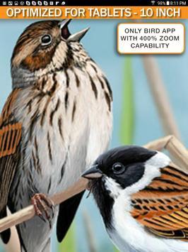 iBird Pro Birds North America syot layar 9