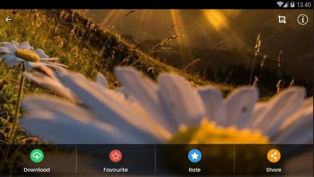 Sunset Flower Wallpaper screenshot 8