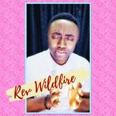 RevWildfire icon