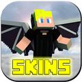 Wing Skins