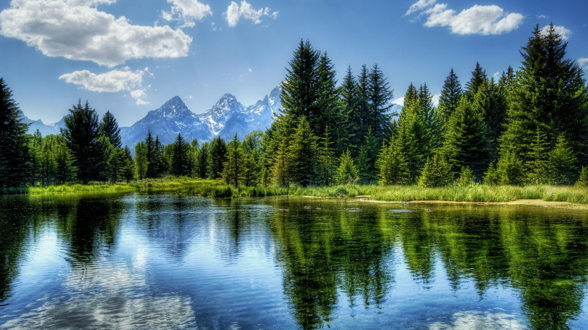 Hd Landscape Wallpaper For Android Apk Download