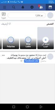 mini screenshot 2