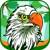 Different Types Of Birds Quiz Game icon