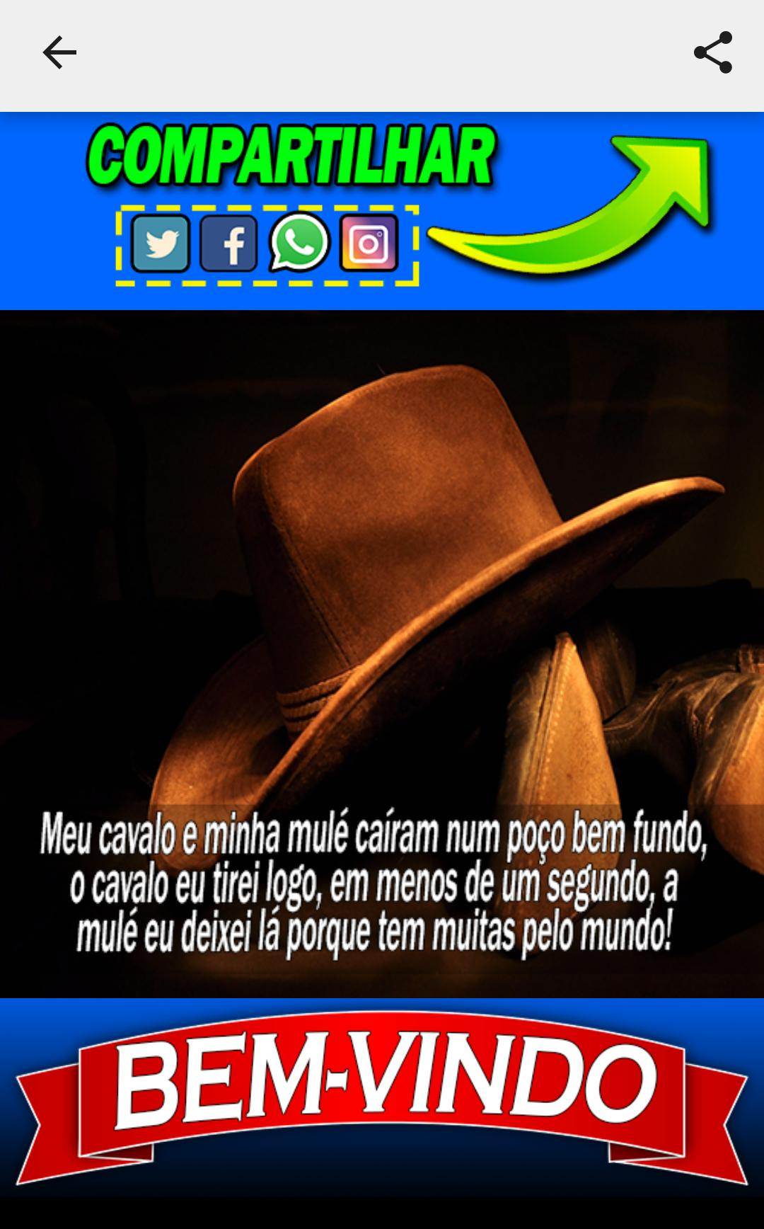 Frases De Vaquejada For Android Apk Download