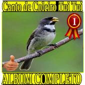 Canto de Coleiro Tui Tui album canto de pássaros icon