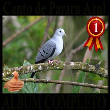 Canto Pararu Azul completo album canto de pássaros poster