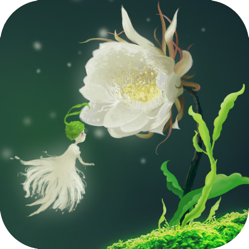 336 Best Cactus Flower Live Wallpaper Alternatives And Similar Apps For Android Apkfab Com