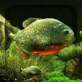 3D Fish Aquarium icon