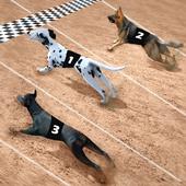 Racing Dog Simulator: Crazy Dog Racing Games icon
