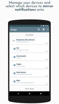 Bridge screenshot 4