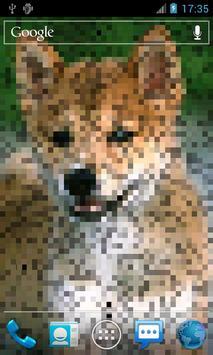 照片像素動態桌布 Photo Pixel 截圖 1