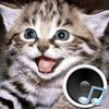 Dźwięki zwierząt. Ucz się zwierząt i graj. ikona