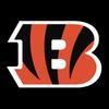 Cincinnati Bengals アイコン