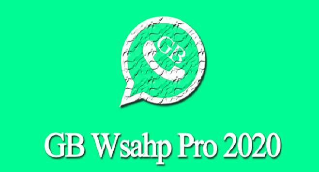 last version Pro Plus 2021 poster