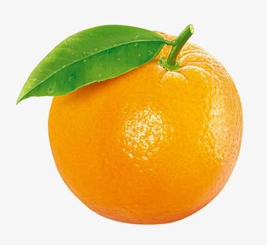 угадай фрукт screenshot 5