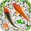 Fish Live Wallpaper 2020: Koi Background Aquarium biểu tượng
