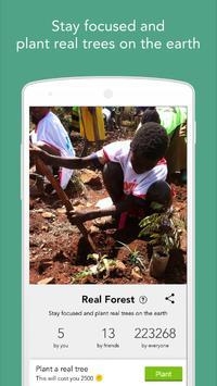 Forest screenshot 4