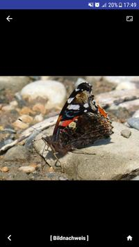 Nature Free - Nordamerika Screenshot 3
