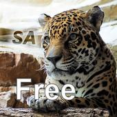 Nature Free - South America icon