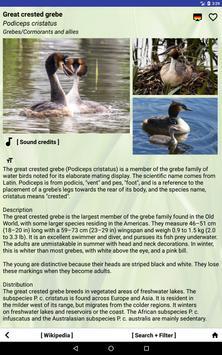 Nature Free - South America screenshot 5