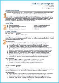 CV Samples screenshot 3