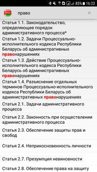 ПИКоАП РБ screenshot 5