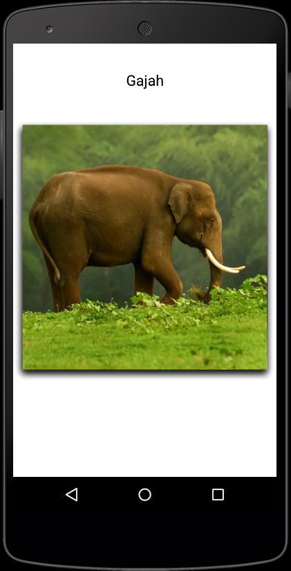 Nama Binatang for Android - APK Download