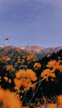 aesthetic wallpapers screenshot 3
