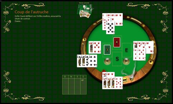 Bridge Célèbre screenshot 2