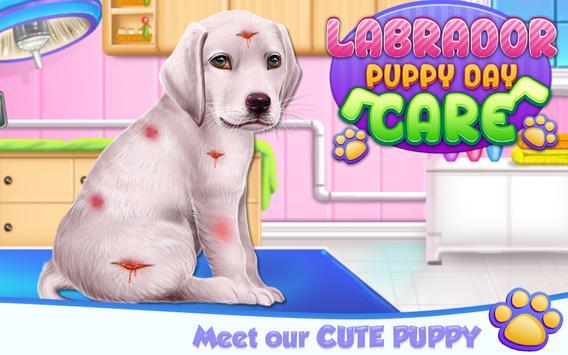 Labrador Puppy Day Care постер