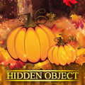 Hidden Object Worlds - Fall Festival