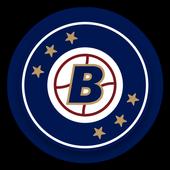 Go Milwaukee Brewers! icon