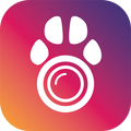 PetCam App - Dog Camera App