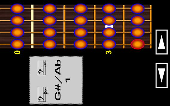 Learn to play Bass Guitar PRO screenshot 3