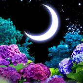 Ajisai-Firefly LWP Trial icon