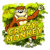 Ape Fortune icon