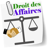 Droit des Affaires icon