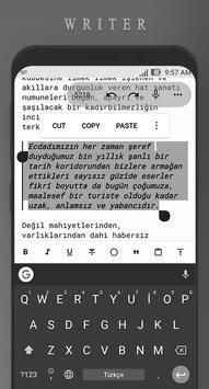Writer screenshot 2