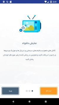 ماهواره جیبی poster