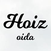 Hoiz icon