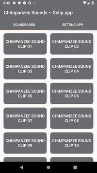 Chimpanzee Sound Collections ~ Sclip.app poster
