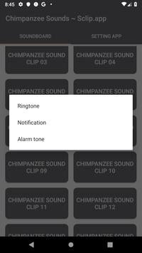 Chimpanzee Sound Collections ~ Sclip.app screenshot 3