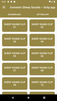 Domestic Sheep Sound Collections ~ Sclip.app poster