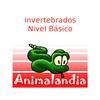 ikon Animalandia Invertebrados 1