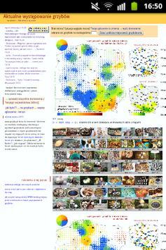 grzyby.pl na grzyby atlas przyjaciel grzybiarza screenshot 1