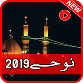 New nohay collection 2019 icon