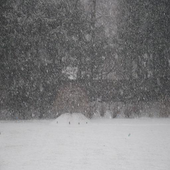 Snowstorm Sound icon