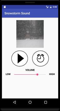 Snowstorm Sound poster