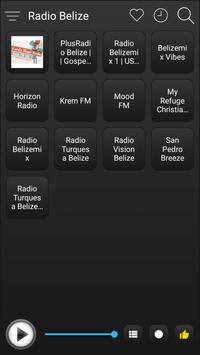 Belize Radio Stations Online - Belize FM AM Music screenshot 1
