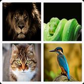 Animales – Aprende Los Mamiferos y Aves icon